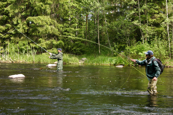 Rapids Fishing In The Tampere Region Finland